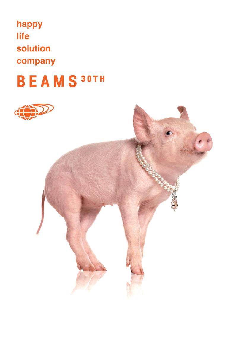 beams_30th_8